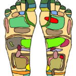 220px-Foot_Chart1_small